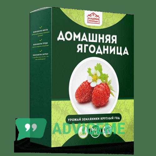 Отзывы о Домашняя ягодница — клубника - фото товара
