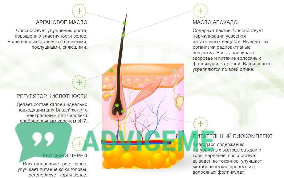 Компоненты препарата для лечения грибка стопы