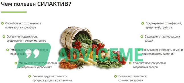"""Преимущества удобрения """"Силактив"""". Обзор и отзывы о безопасном удобрении для повышения урожая"""