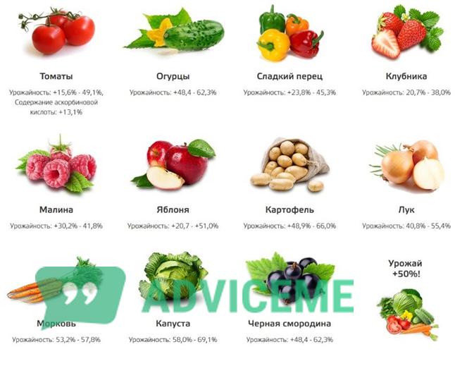 """""""Силактив"""" можно использовать для 11 видов растений"""