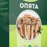 Домашняя грибница (Опята) – отзывы. Возможность выращивания грибов или развод покупателей.